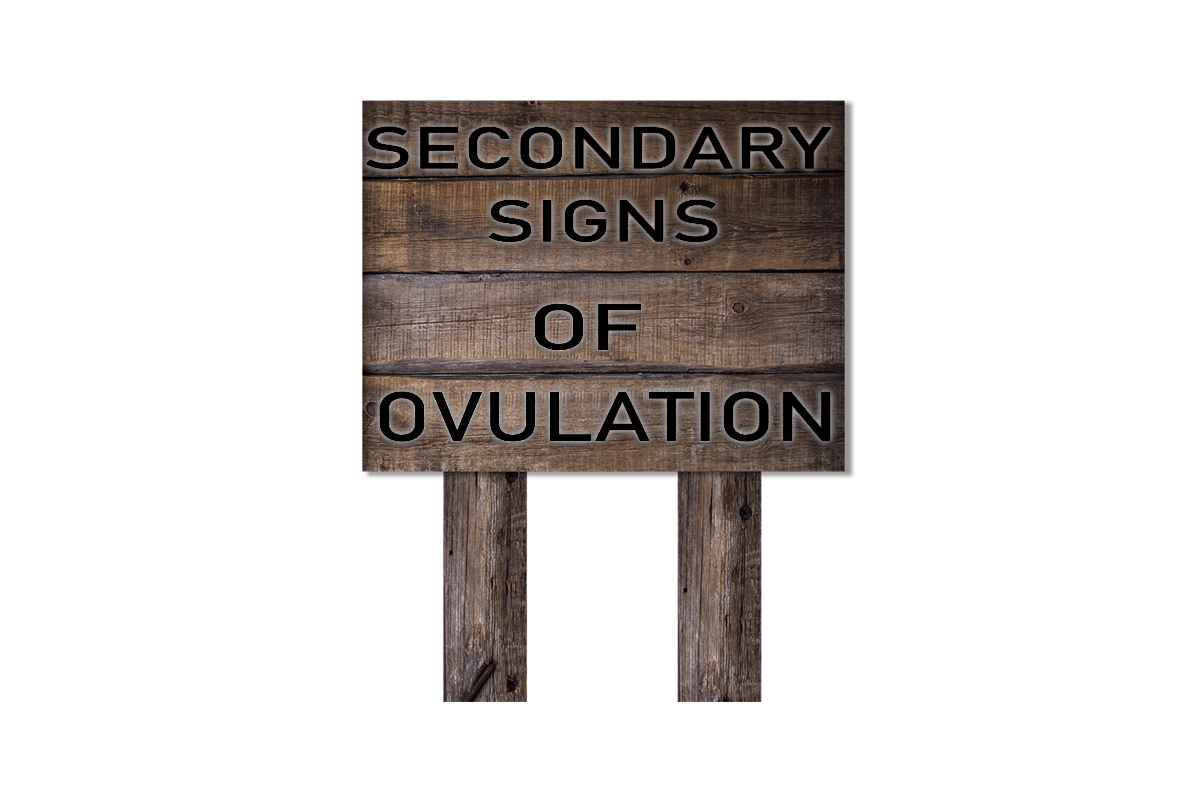 SECONDARY SIGNS OF OVULATION